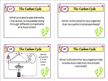 The Carbon Cycle - Task Cards {With Editable Template}