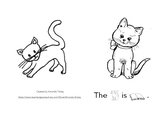 The Cat Is Booklet (ESE)