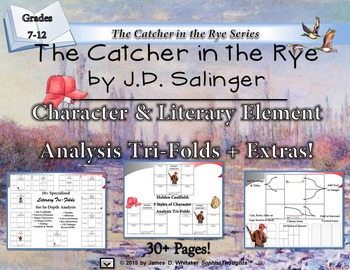 The Catcher in the Rye Character & Literary Element Analys