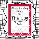The Cay by Theodore Taylor: Close Reading Novel Study Guide