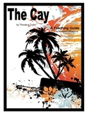The Cay Novel Teaching Guide