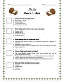 The Cay - Ch. 1 Quiz w/ Answer Key (Editable)