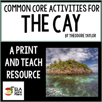 Literature Guide for The Cay ~ Handouts, Activities, Tests Common Core Aligned!