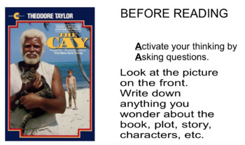 The Cay instruction guide (teacher)