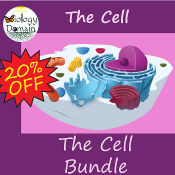 The Cell Bundle