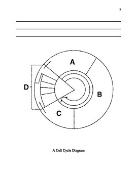 The Cell Cycle Book
