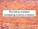 The Cell Factory
