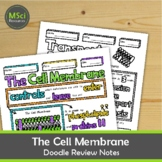 The Cell Membrane Middle School Biology Doodle Notes