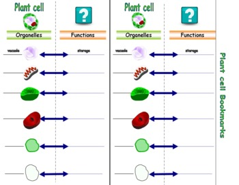 The Cell Plant Cell Bookmarks  Parts of the Plant Cell