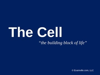 The Cell - Quick Review PPT Presentation/Handout