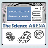 The Cell Structure and Functions ACTIVITY Worksheet - FREE (Science, Biology)