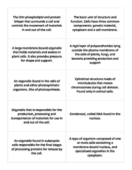 The Cell Vocab Flash Cards - Keystone Biology