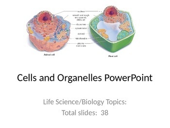 Cells and Organelles PowerPoint