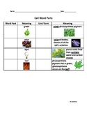 Cells Root Word Parts