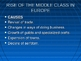 The Characteristics of Medieval Europe