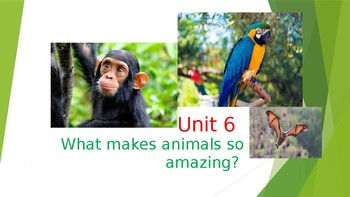 The Chimpanzees I Love - Grammar Lesson on Gerunds and Infinitives