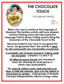 The Chocolate Touch Vocabulay Bingo