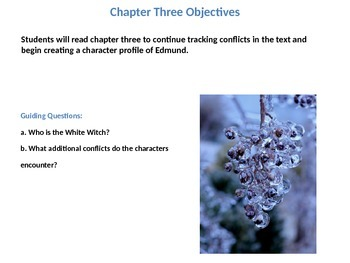 The Chronicles of Narnia: The Lion, the Witch, and the Wardrobe Ch.3  Lesson