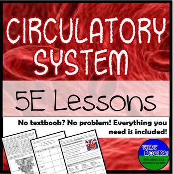Circulatory System 5E Lesson Plans- No Textbook? No Problem!