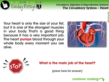 The Circulatory System - Heart - NOTEBOOK Gr. 3-8