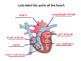 The Circulatory System SMART notebook presentation