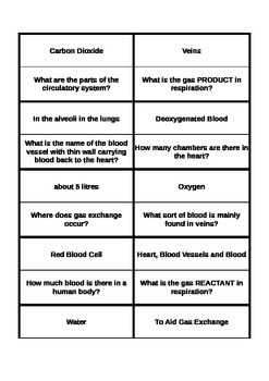 The Circulatory System revision loop cards