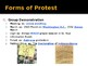 The Civil Rights Movement Forms of Protest PowerPoint Lecture