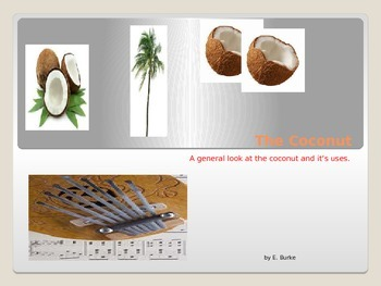 The Coconut