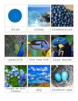 The Color Blue in Nature-Montessori 3 Part Cards