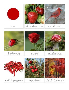 The Color Red in Nature-Montessori 3 Part Cards