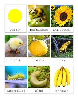 The Color Yellow in Nature-Montessori 3 Part Cards