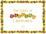 The Color of Falling Leaves