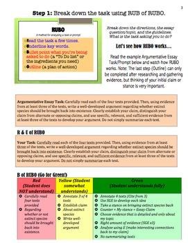 Common Core Argumentative Essay Boot Camp Survival Guide (33 pages, editable)