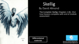 The Complete Skellig Chapters 1 - 46 (15x1 hour lessons)