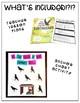The Crow and the Earthquake- Behavior Basics Book Club