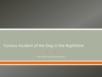 The Curious Incident of the Dog in the Night-time JOURNALPROMPTS