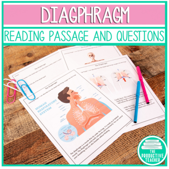 The Diaphragm: Independent Lesson