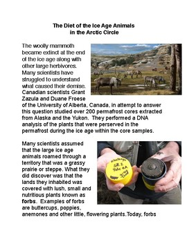 The Diet of the Ice Age Animals  in the Arctic Circle