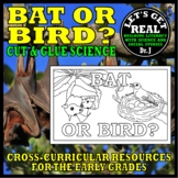 Nocturnal Animals: The Differences Between BATS AND BIRDS (Cut-and-Glue Science)