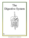 The Digestive System Introductory/Supplement Packet
