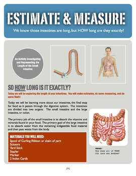 The Digestive System!  A 3-Week investigation for Grades 3-5