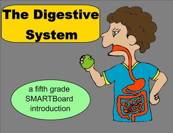 The Digestive System - A Fifth Grade SMARTBoard Introduction