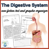 The Digestive System Internal Structures of Humans