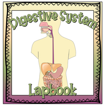 The Digestive System Lapbook