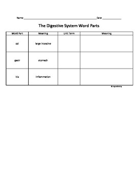 The Digestive System Root Word Parts