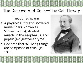 The Cell: The Discovery of Cells Powerpoint Slide Show