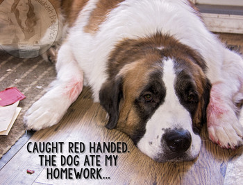 The Dog Ate My Homework - St. Bernard - Funny - Silly - Classroom Poster