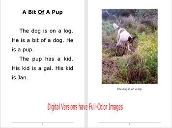 The Dog On The Log Chapter