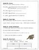 The Dog That Dug for Dinosaurs ~ Language Arts Workbook ~ 2nd Grade