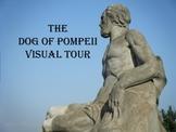 The Dog of Pompeii Story Photo Tour